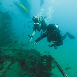 experience scuba diving